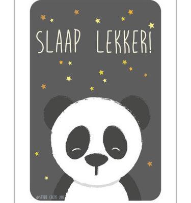 Studio Circus Poster Panda